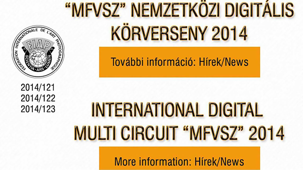 International Digital Circuit 2014